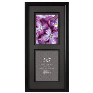 Pinnacle 2-Opening 5 in. x 7 in. Matted Picture Frame
