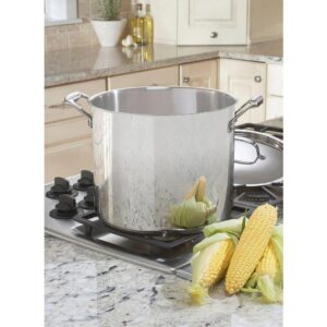 Cuisinart Chef's Classic 12 qt. Stainless Steel Stock Pot with Lid