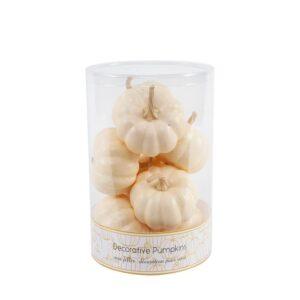 Flora Bunda 3 in. Fall Harvest Cream White Plastic Foam Pumpkin Filler in PVC Box (8-Pieces Per Box)