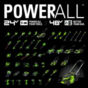 Greenworks 12 in. 24-Volt Battery Cordless String Trimmer with 2.0 Ah USB Battery and Charger Included ST24B215