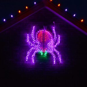 Haunted Hill Farm 48 in. x 40 in. Creepy Crawling Spider Indoor/Outdoor LED Halloween Window Light