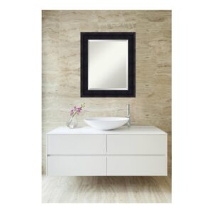 Amanti Art Annatto 21 in. W x 25 in. H Framed Rectangular Beveled Edge Bathroom Vanity Mirror in Mahogany