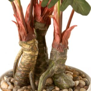 National Tree Company 21 in. Garden Accents Philodendron Flower