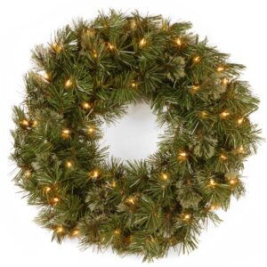 National Tree Company 24 in. Wispy Willow Artificial Christmas Wreath with Lights