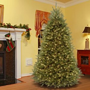 National Tree Company 9 ft. PowerConnect Dunhill Fir Tree with Clear Lights