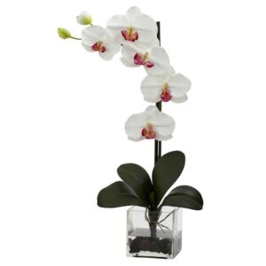 Nearly Natural Giant Phalaenopsis Orchid with Vase Arrangement in White