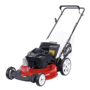 Toro Recycler 21 in. Briggs & Stratton High Wheel Gas Walk Behind Push Lawn Mower with Bagger