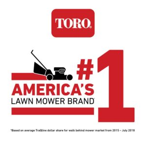 Toro TimeMaster 30 in. Briggs and Stratton Electric Start Walk-Behind Gas Self-Propelled Mower with Spin-Stop